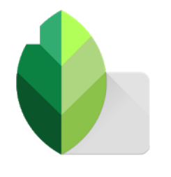 snapseed-for-pc-windows-10-and-mac