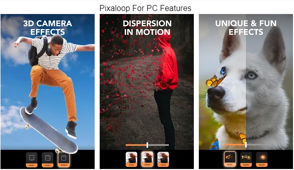 pixaloop for pc features